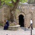 Jak się przygotować na wycieczkę do Efezu!